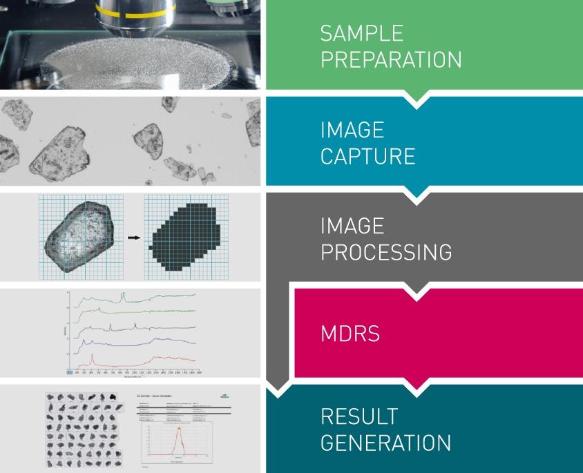 Processus morphologique avec MDRS