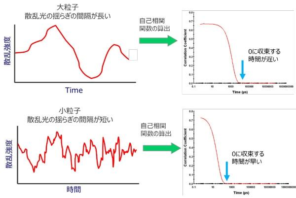 jp-technology-dls-02.jpg